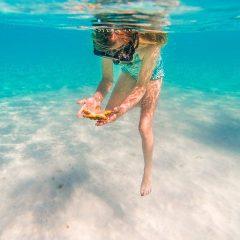 5 Reasons To Go Snorkeling in Grenada